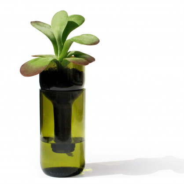 Blumentopf aus einer echten Weinflasche! Selbstbewässerndes Pflanzgefäß von side by side Design - Modell self watering bottle grün.