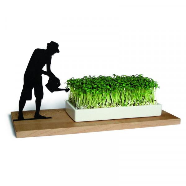 Kresseschale smart n green Gärtner von side by side: mit Gärtner-Silhouette, Spitzahorn-Brett und weißer Porzellanschale. Gefüllt mit Kresse.