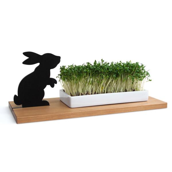 Kresseschale smart n green Hase von side by side: mit Hasen-Silhouette, Spitzahorn-Brett und weißer Porzellanschale. Gefüllt mit Kresse.