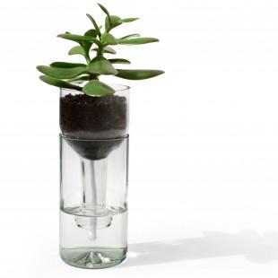 Selbstbewässerndes Pflanzgefäß von side by side Design - Modell self watering bottle transparent. Blumentopf aus einer echten Weinflasche!